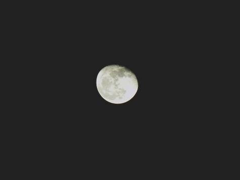 2017年11月06日の夜 031-1