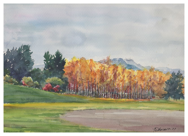 2017年11月白樺と手稲山