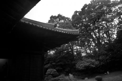 万福寺にも雨が降る