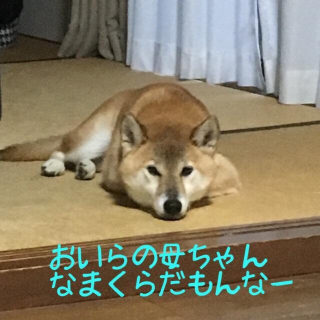 fc2blog_20171022204512165.jpg