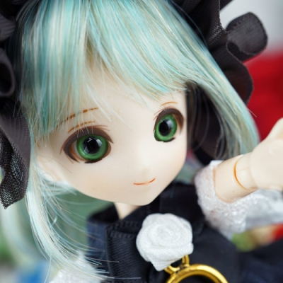 17-11-chamomile-01-b.jpg