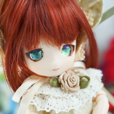 17-11-rosemary-03-b.jpg