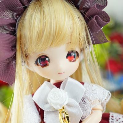 17-11-vanilla2-06-b.jpg