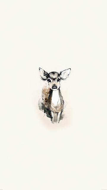 wallpaper-iphone6-plus-animal-illustration-02.jpg