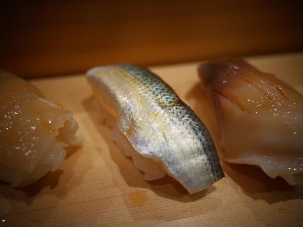 R0030737小鰭 (1)