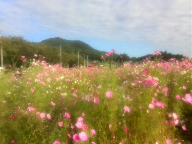 日和田山1