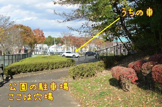 c-DSC_8251.jpg