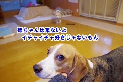 いちゃいちゃ 3