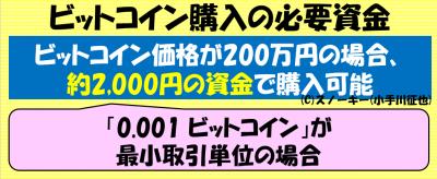 ビットコイン必要資金100万円?200万円?実は1万円以下