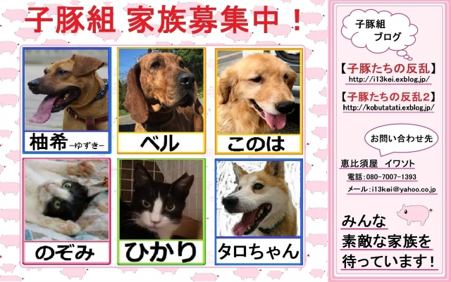 satooyabosyuu-0928.jpg