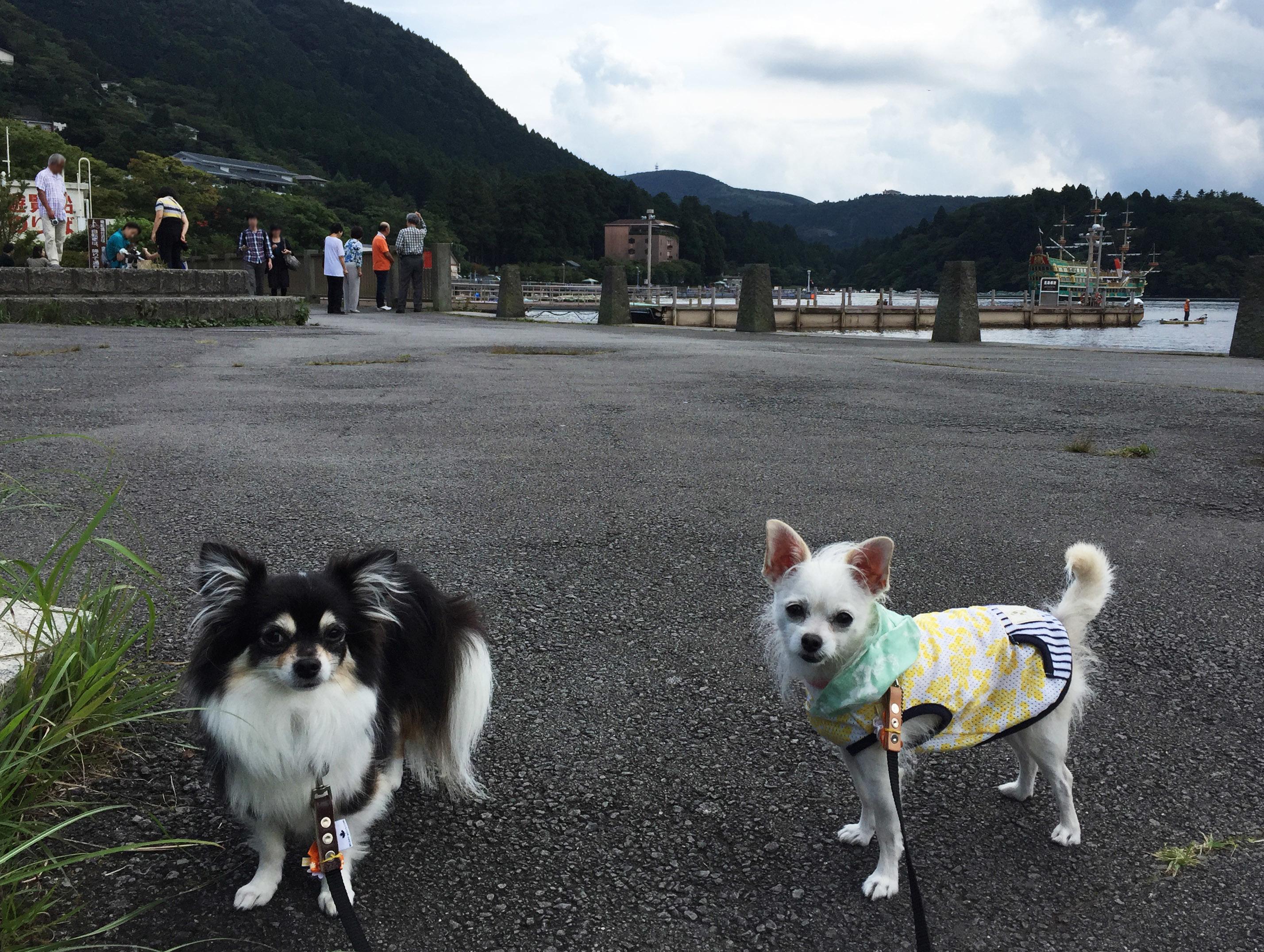 1709芦ノ湖にて