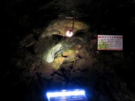 富岳風穴09