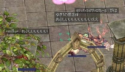 screenLif501.jpg