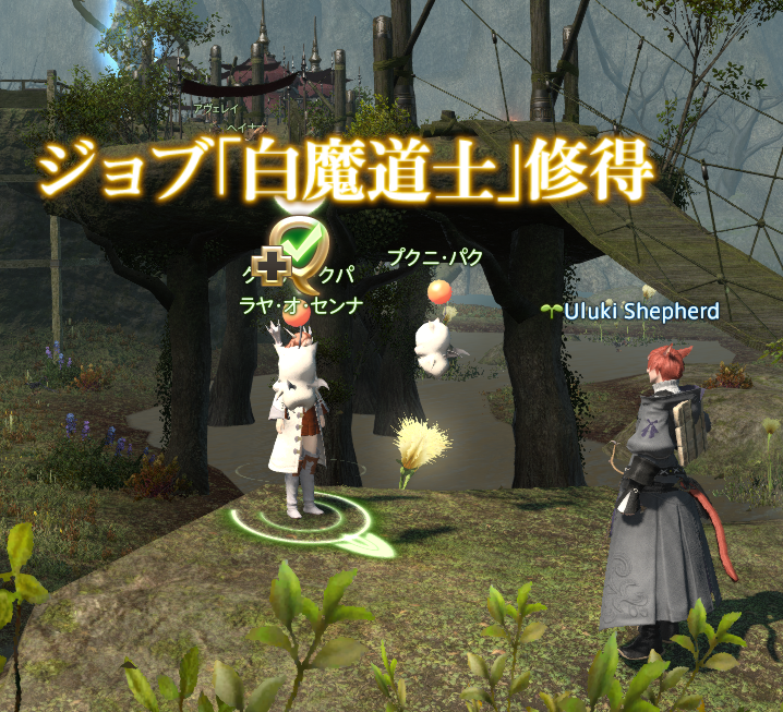 ff14_23.png