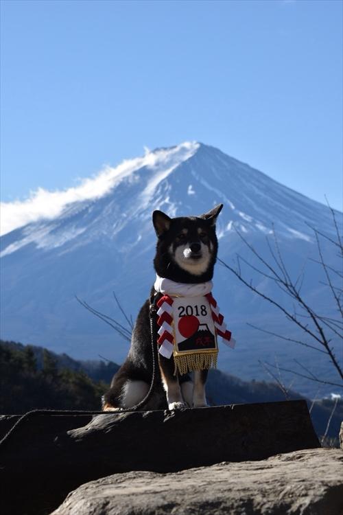 20171217早朝富士山0057_R