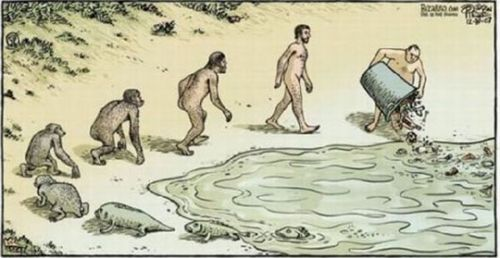 Pollution-Evolution.jpg