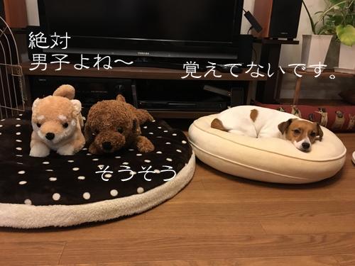 2017-09-04-ケーキ-006