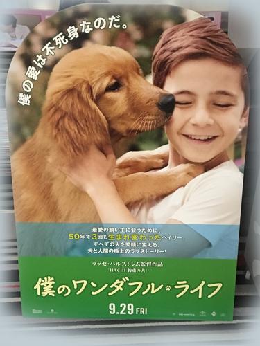 2017-09-29-映画-001
