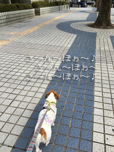 2017-10-04-初電車-017