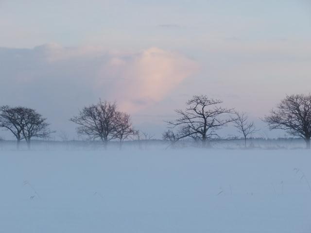 霧のサロベツ