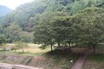 新平ヶ原キャンプ場11
