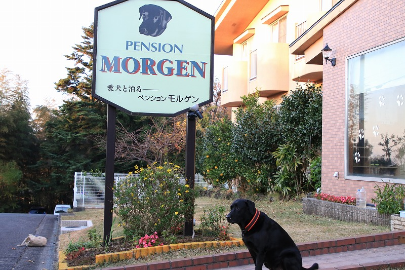 モルゲン到着