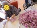 午前いっぱい、療養棟は菊の香りで満たされました