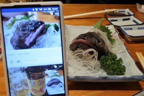 魚さんこ (23)_R