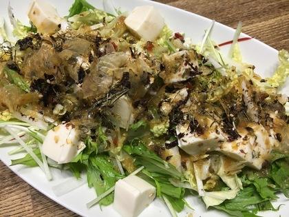 豆腐と白菜、水菜のサラダ