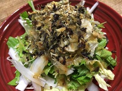 簡単白菜と水菜のサラダ