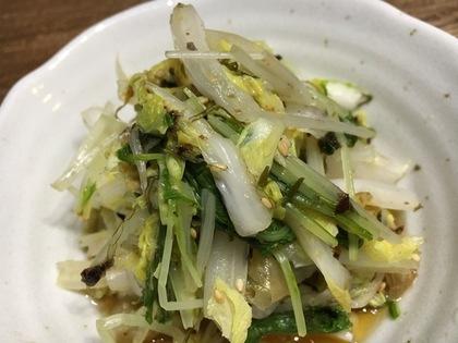 白菜と水菜のおひたし