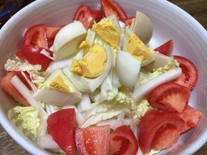 白菜とトマトのサラダ