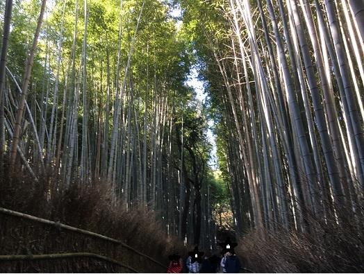 京都903