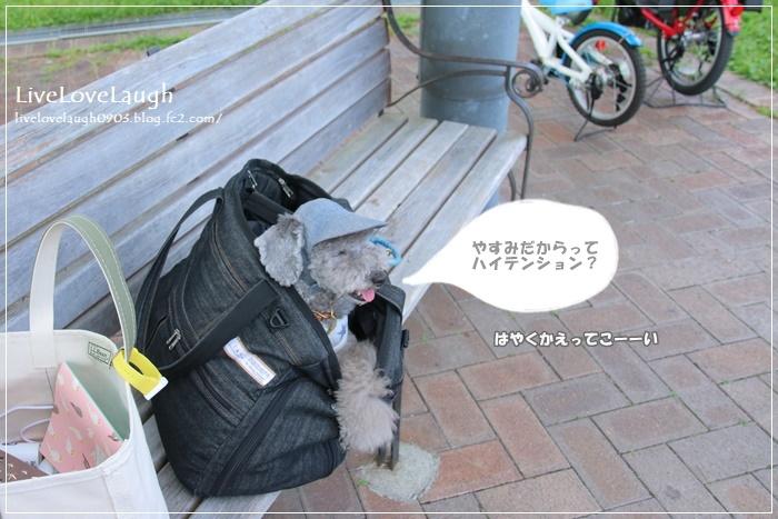 IMG_0067びわこ3