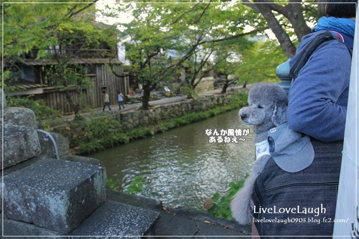 IMG_0144ひむれ1