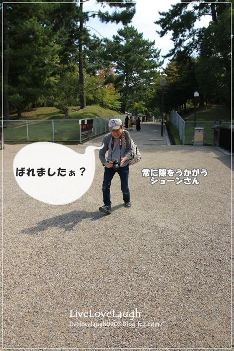 IMG_0348なら6