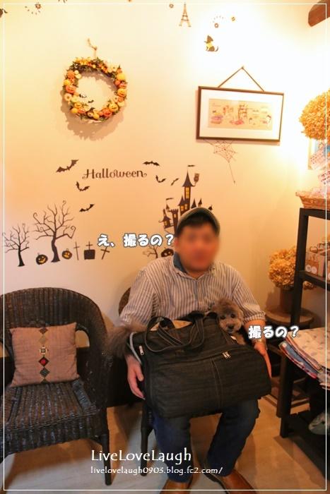 IMG_0459くんくん
