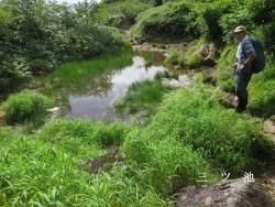 三つ池の一つ