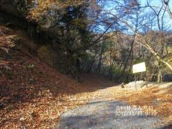 急林道入り口