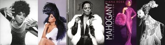 Diana Ross - Theme From Mahogany (Do You Know Where Youre Going To)4