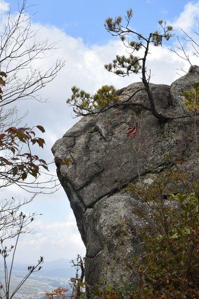 291104 岩石山28