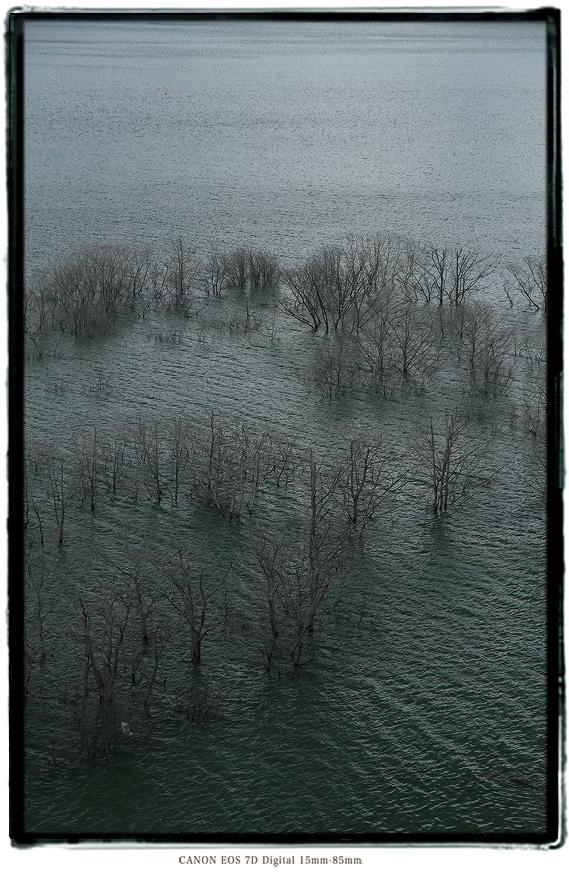 シューパロ湖0710hokkaido0309.jpg