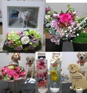 お花&カレンダー00