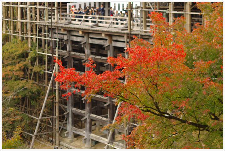 2017年11月7日 京都散歩 (15)