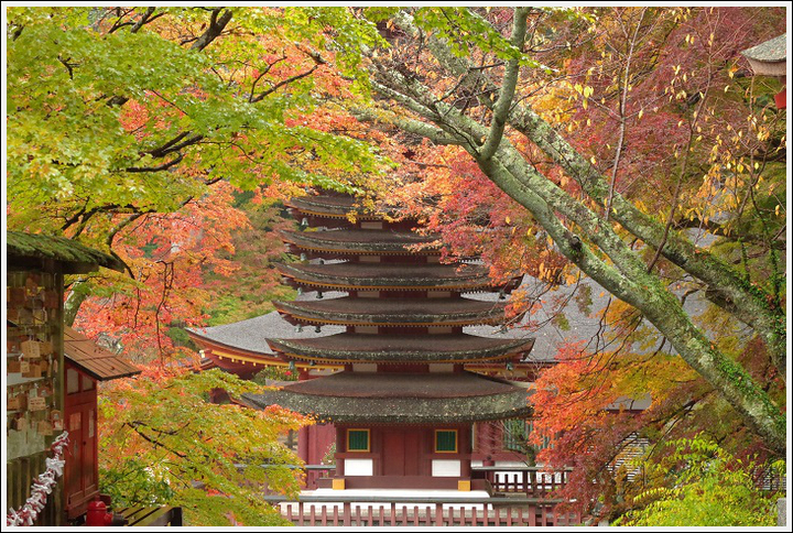 2017年11月14日 談山神社 (3)