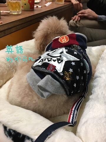 fc2blog_201711182302204fe.jpg