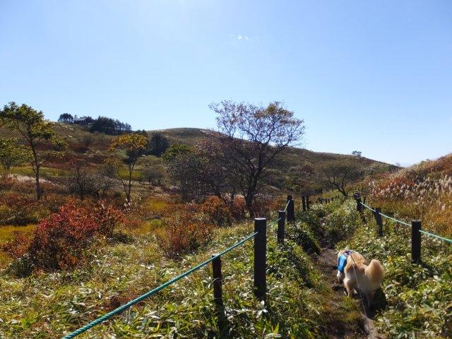 霧ヶ峰高原 2017.9.30 025