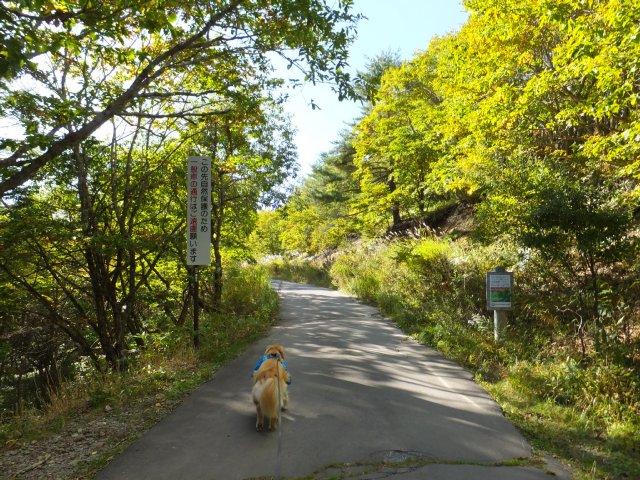 霧ヶ峰高原 2017.9.30 045