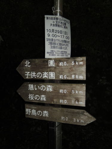 DSCNmaki2587.jpg