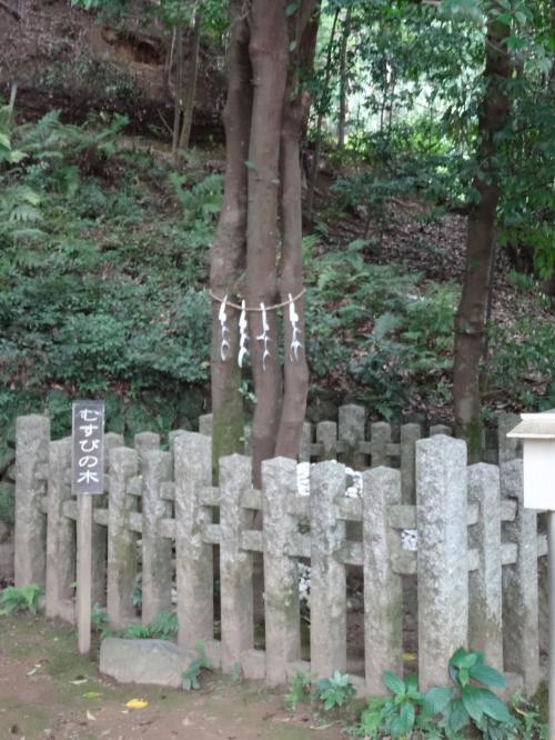 月読神社9